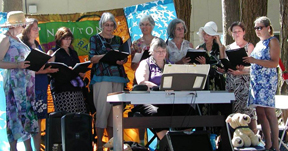 Sacred Web Singers sing at Open Doors for Peace